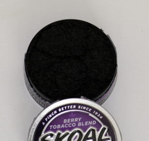 Skoal Berry Blend Dipping Tobacco